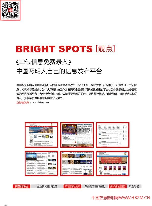 2017中国智慧照明网宣传册-只为更好!