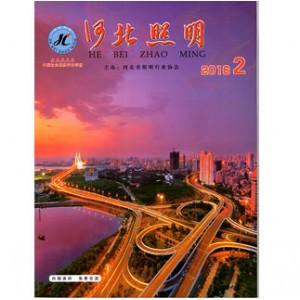 河北省照明行业协会提供服务