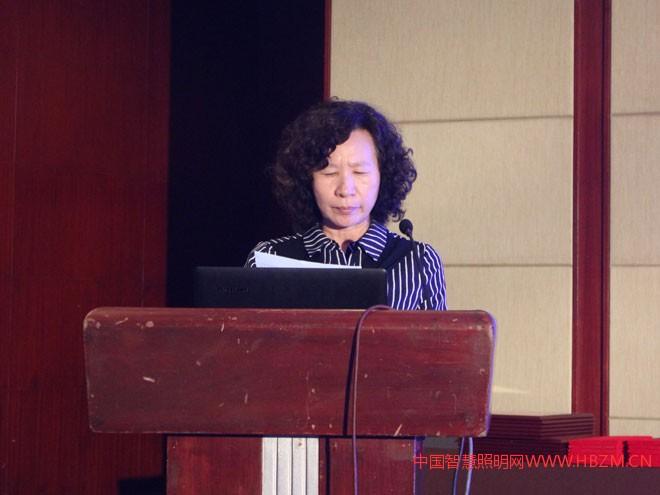 河北省照明行业协会副会长、秘书长张燕