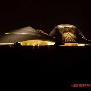 江海阳:面向未来的中国城市照明性别问题思考