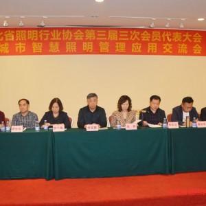 河北省照明行业协会第三届三次会员代表大会 暨城市智慧照明管理应用交流会取得圆满成功