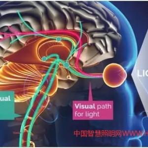 国际照明委员会发布新标准,为以人为本的照明提供技术基础