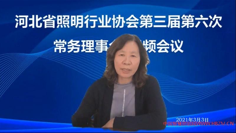 河北省照明行业协会驻会副会长兼秘书长主持会议